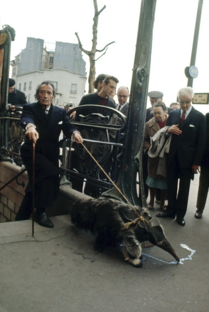 Salvador Dalí with anteater Paris 1969